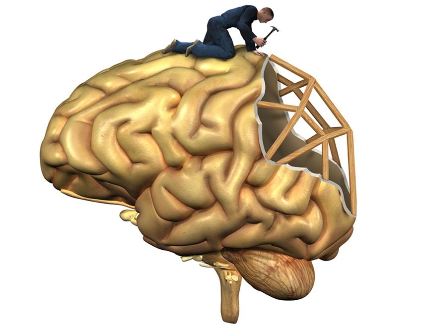 восстановление мозга после алкоголя