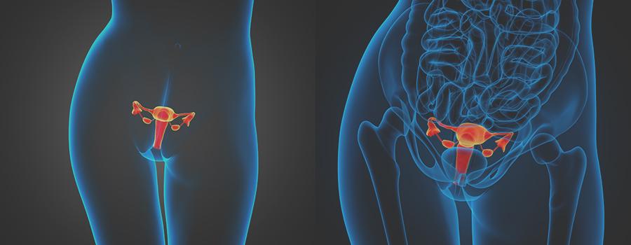 Как наркотики влияют на репродуктивную систему