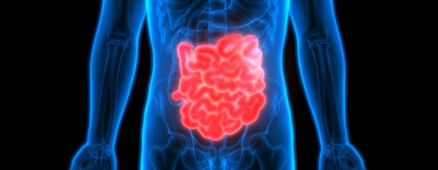 Влияние наркотиков на пищеварение